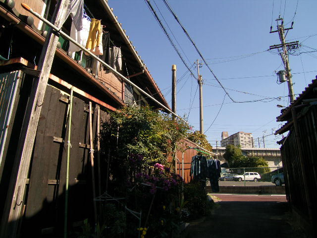 biwajima0537.jpg