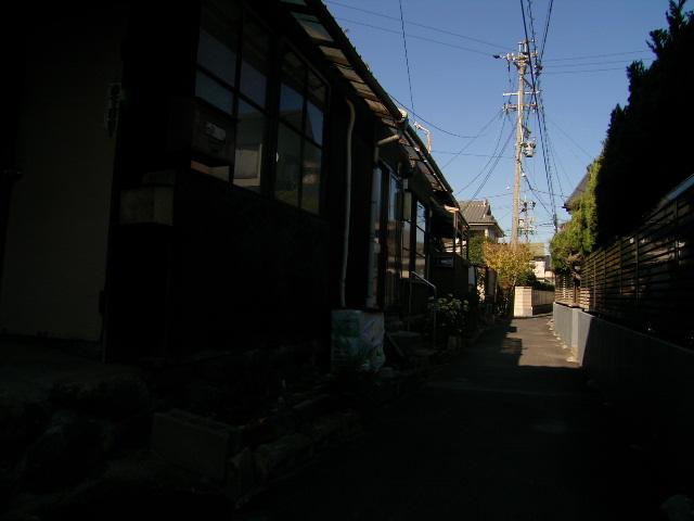 biwajima0538.jpg