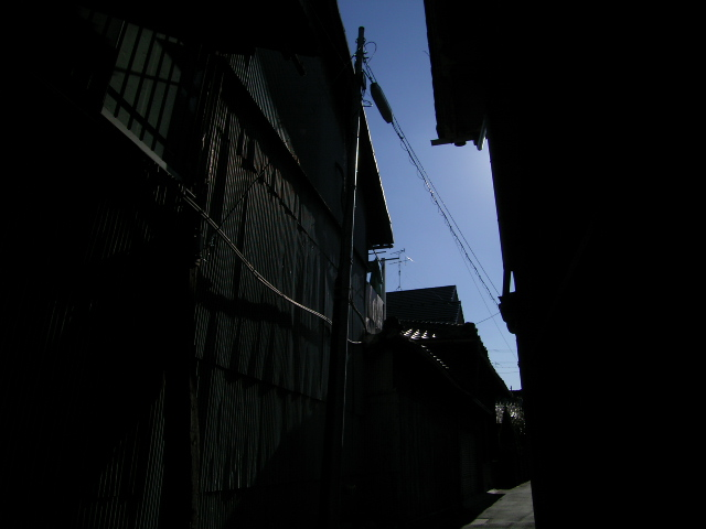 biwajima0557.jpg