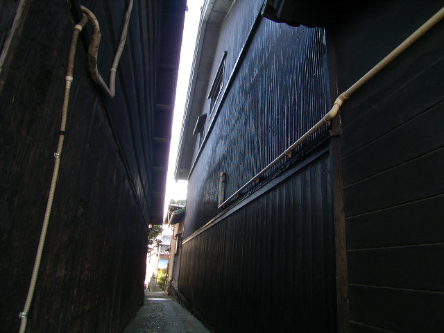 biwajima0568.jpg