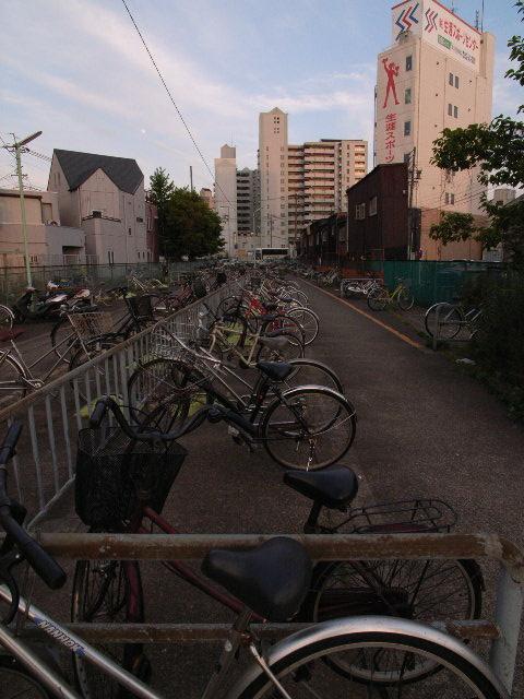 fujinoyu2989.jpg