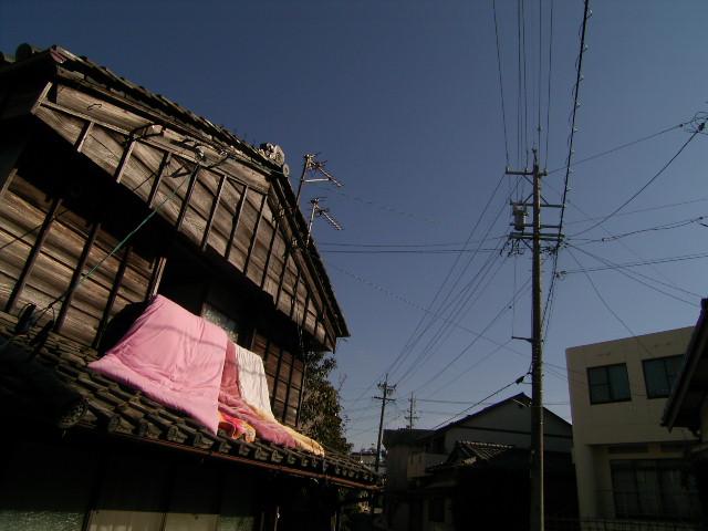 furuichi0828.jpg