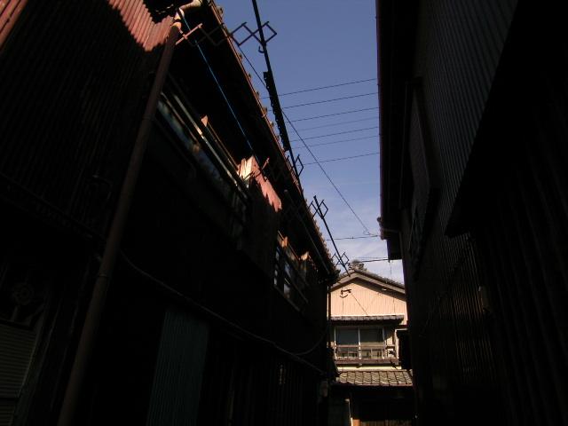 furuichi0832.jpg