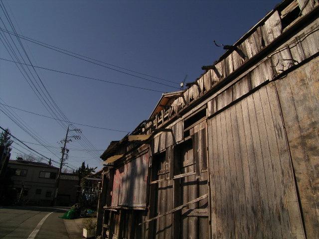 furuichi0835.jpg