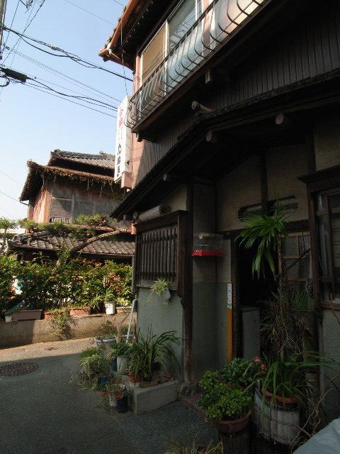 gamagori2914.jpg