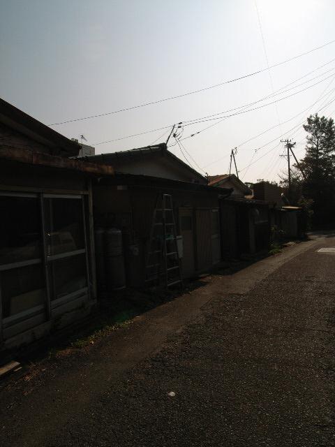 gamagori2923.jpg