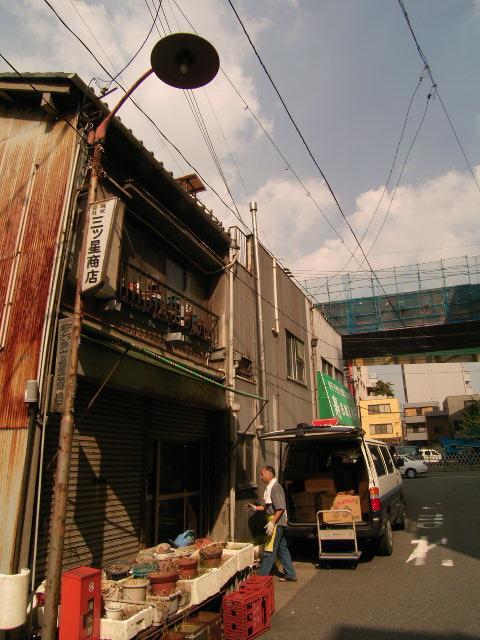 habashita2446.jpg