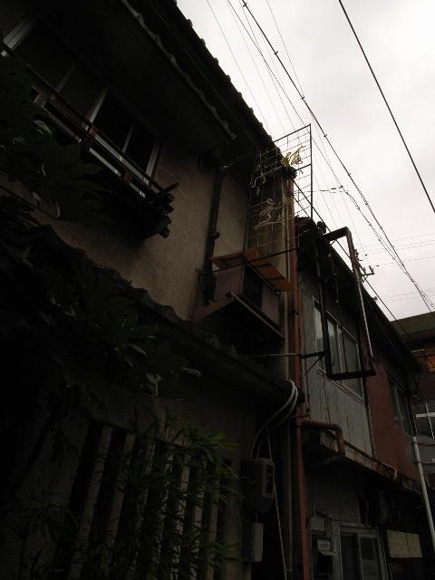 hanazono1901.jpg