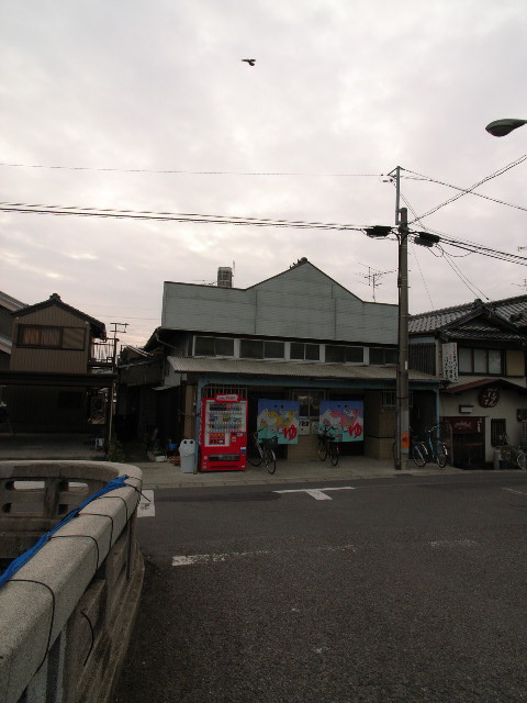 hashimotoyu1248.jpg