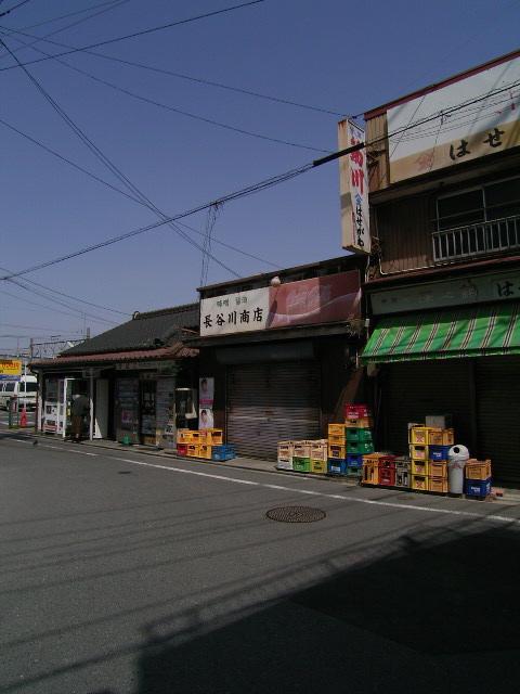 higashikata1519.jpg