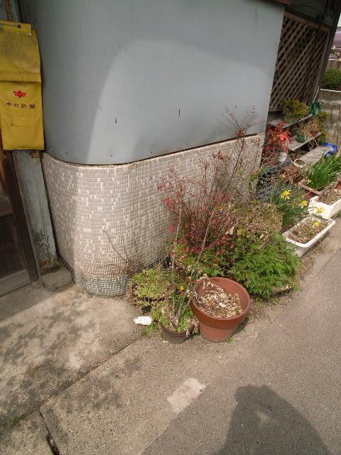 hotei-minami1611.jpg