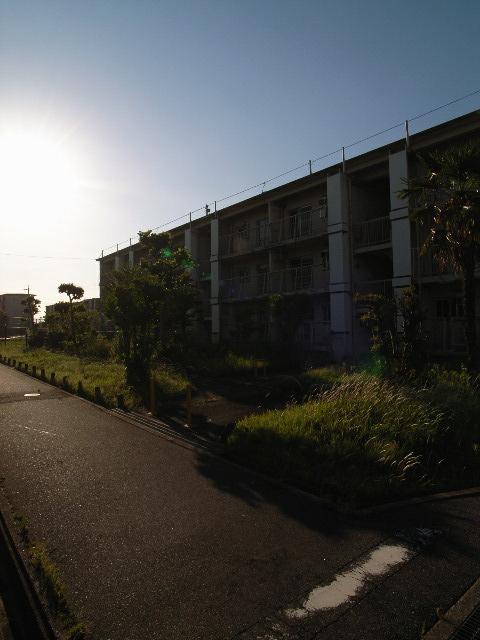inazawa3130.jpg