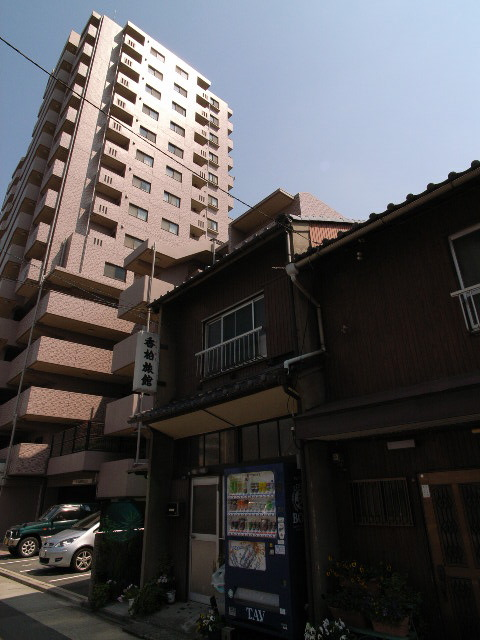 kamejima1302.jpg