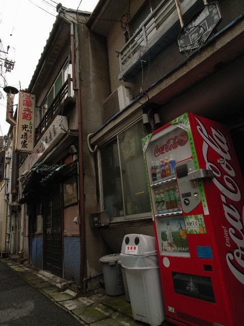 kanou-mizuno1893.jpg