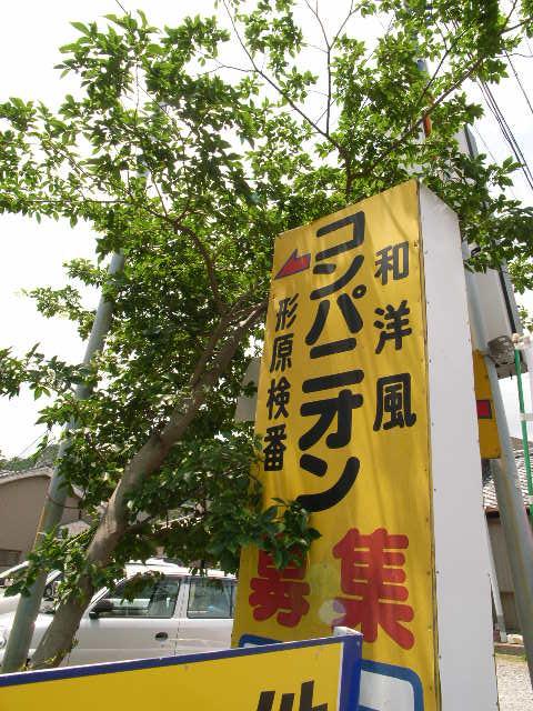katahara4499.jpg
