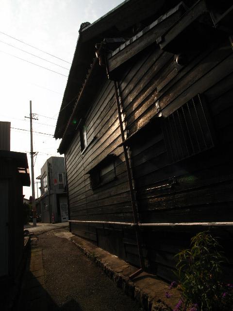 katahara4608.jpg