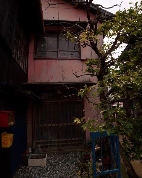 katahara4613_2.jpg