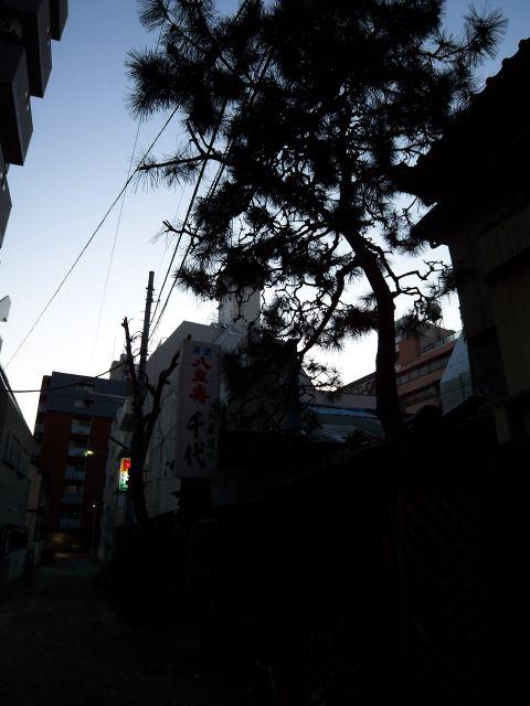 kawasaki3541.jpg