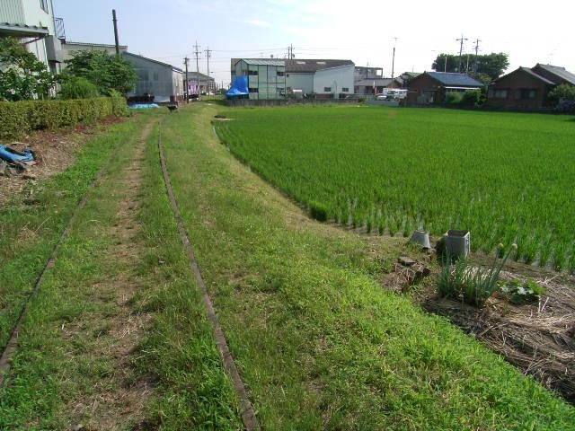 kichisenyou2066.jpg