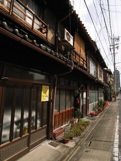 kikui2458.jpg