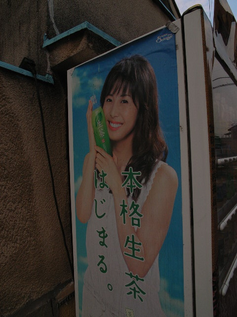 kisogawa3363.jpg