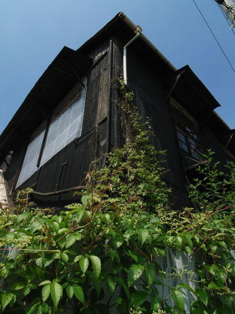 kitayama2168.jpg