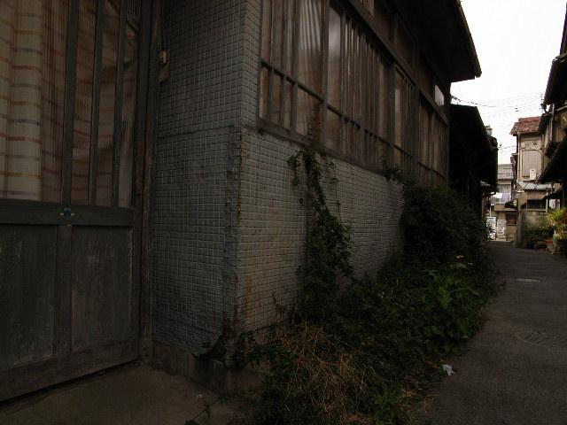kochino1646.jpg