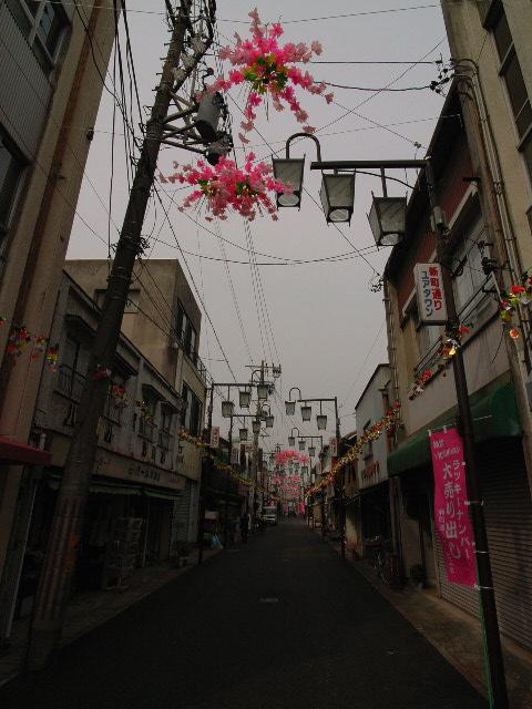 kochino1653.jpg
