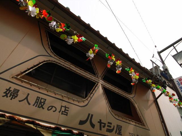 kochino1657.jpg