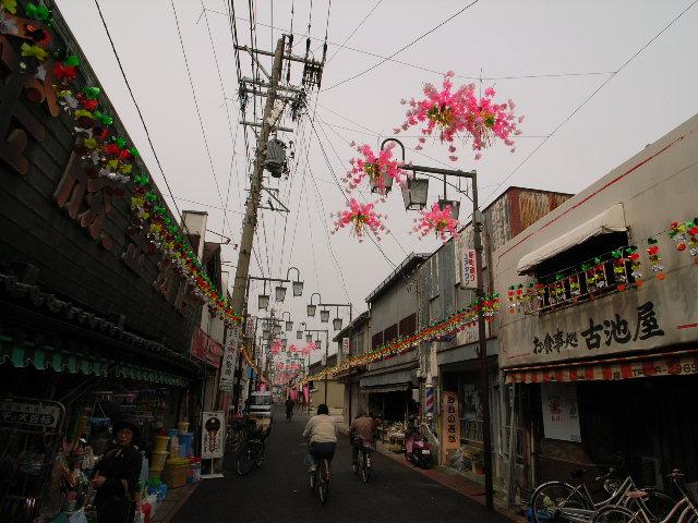 kochino1659.jpg