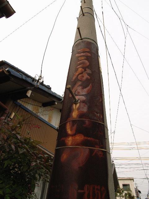 kochino1662-1.jpg