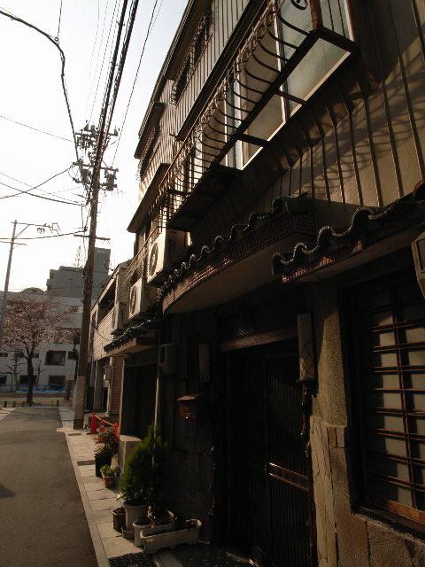 kokusaien2826.jpg