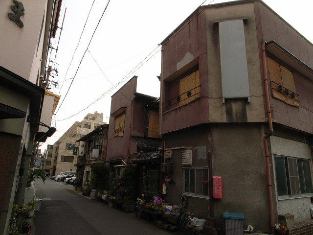kokusaien2831.jpg