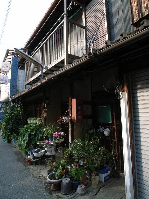 koriyama3764.jpg