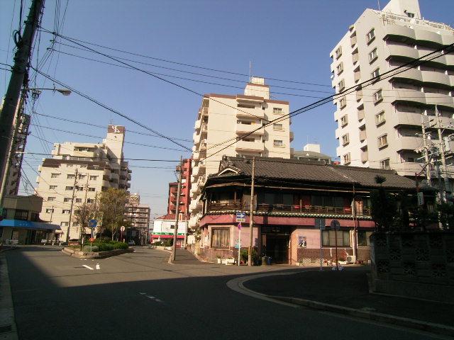 koyo0275.jpg
