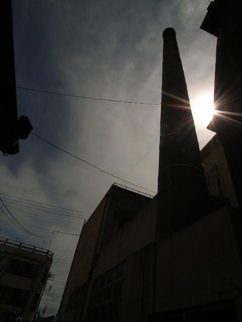 miya4537.jpg