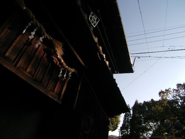 miyuki1087.jpg