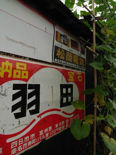 nagashima1691.jpg
