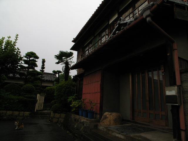 nagashima1698.jpg