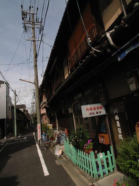 nagono2453.jpg