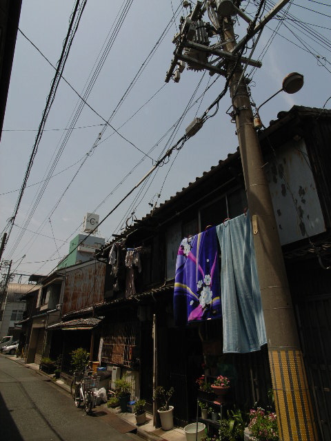 nagono3259.jpg
