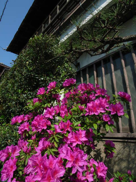 nakanomachi1410.jpg