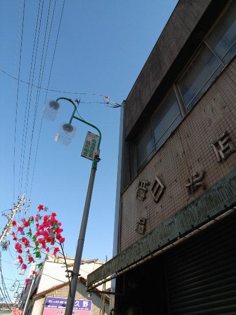 narumi3408.jpg
