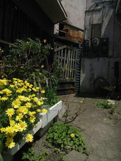 nishio1803.jpg