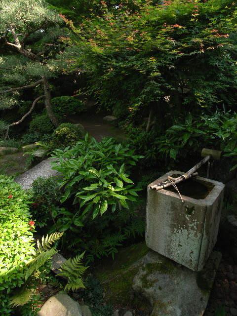 nishio1819.jpg