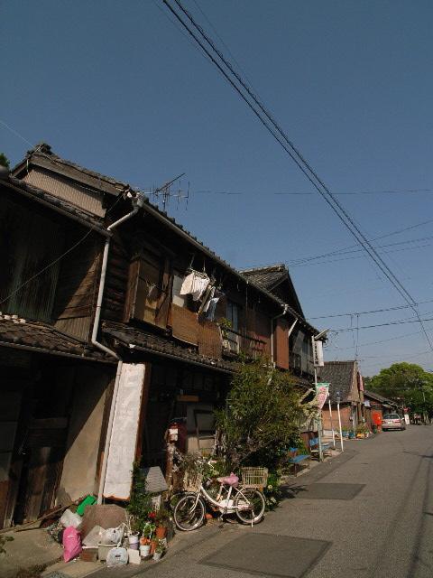 nishio1830.jpg