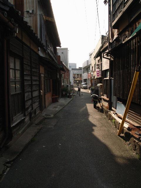 nishio1855.jpg