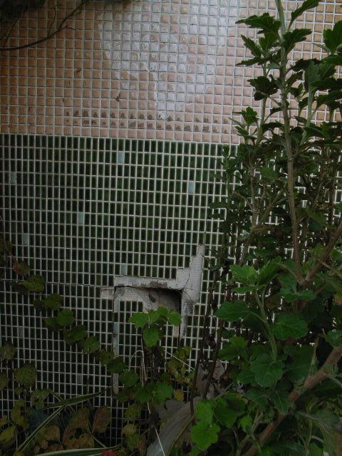 okazaki2873.jpg