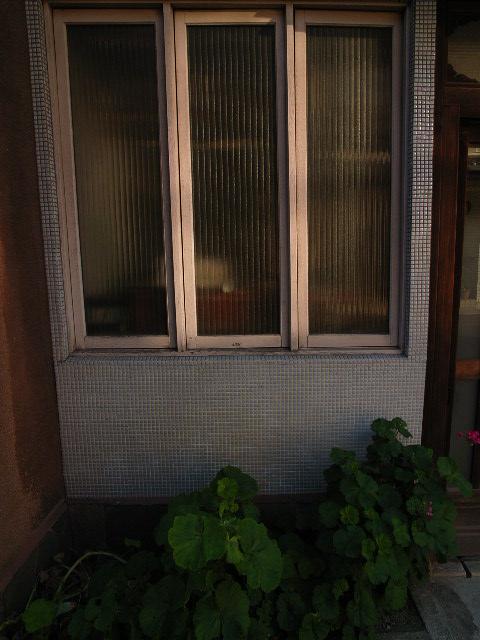 otoubashi4051.jpg