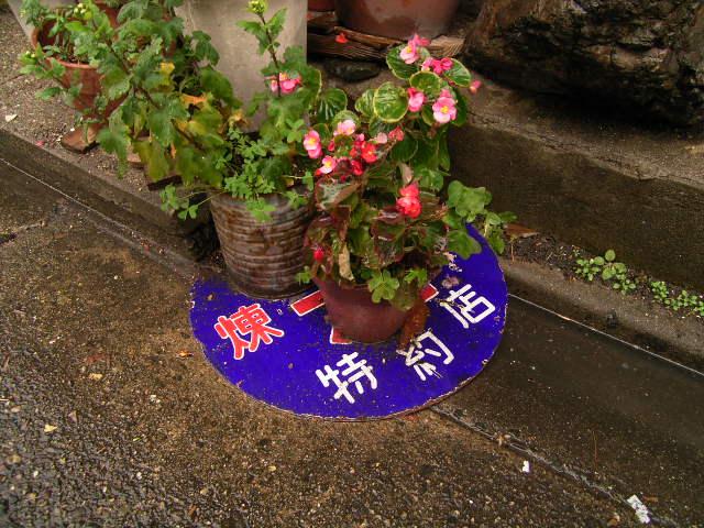sakurayama0031.jpg